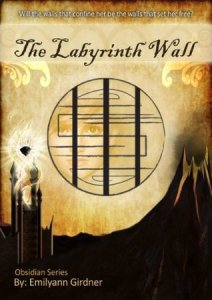 The Labyrinth Wall Book Cover